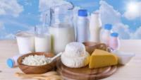 斑马鱼胚胎生物测定方法 首次应用于乳品质量安全