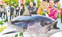 首届广东渔业种业博览会广州举行