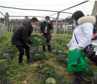 犍为县农业农村局及绿促会携手爱心企业捐助驰援武汉