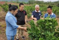 """仁寿县联合生态农业促进会打造""""明日见""""高端区域品牌"""
