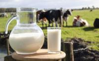 陕西出台乳制品质量安全 提升行动实施方案