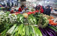 """""""菜篮子""""产品生产稳定 春节市场供给有保障"""