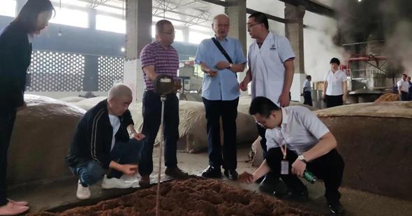 川酒集团生产技术委员会专家为品质创新提供核心支撑