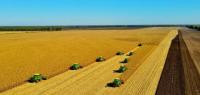 """我国粮食安全""""压舱石""""秋收告捷 预计粮食总产量将超460亿斤"""